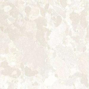 Digital Glazed Vitrified Tile 600600mm gtv pgvt 1119 p