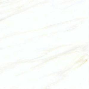 Digital Glazed Vitrified Tile 600600mm gtv pgvt 1191