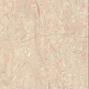 Digital Glazed Vitrified Tile 600600mm gtv pgvt 1208 p