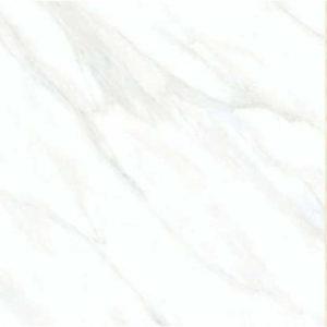Digital Glazed Vitrified Tile 600600mm gtv pgvt 1999